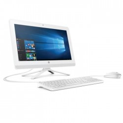 HP 20 All-in-One PC 20-C010NF